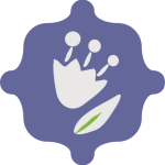 logo Kostroma